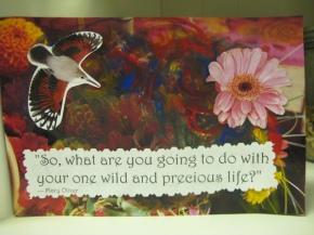 Flowers & Creativity